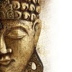 Buddha, Preghiera, Meditazione